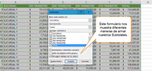 Conociendo los Subtotales en Excel