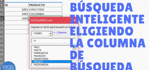Elegir la columna de búsqueda en un Formulario de búsqueda inteligente en Excel vba