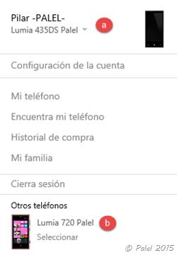 Cuentas Microsoft - Administración - Palel.es
